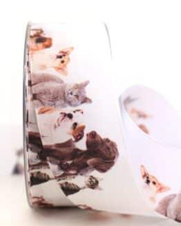 Geschenkband Hunde und Katzen, 40 mm - geschenkband-gemustert, dekoband